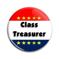 Button Pin: Class Treasurer (GT5054)